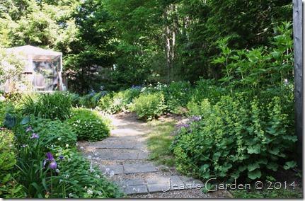solstice garden 2014