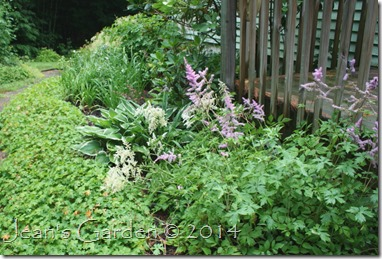 deck border july 2014