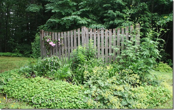 fence border july 2014