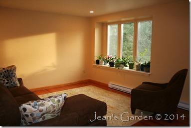 new plant window