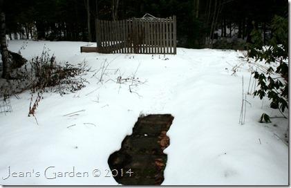 snowy december garden