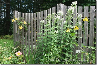 fence border tall
