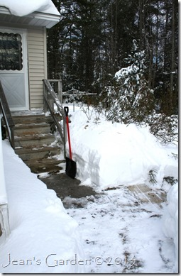 shoveled back entry