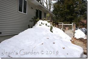 big snow pile deck