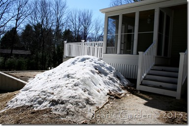 snowpile front
