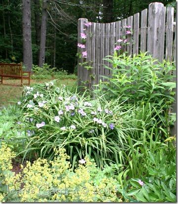 fence border pastels