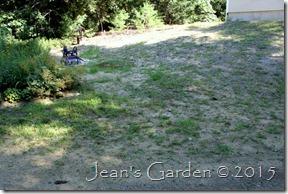 lower garden site2
