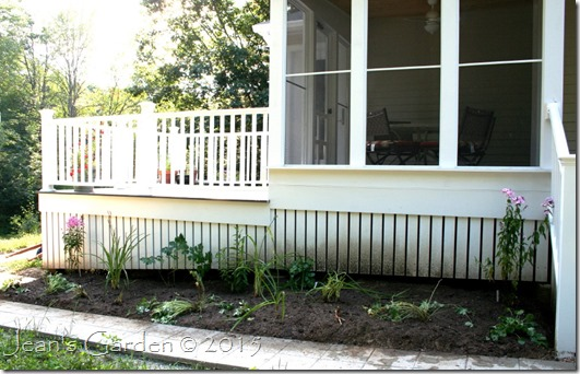 planted watered porch border