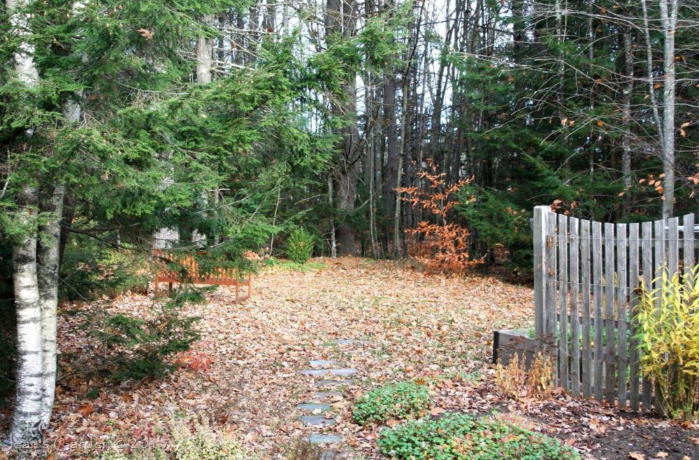 Leaf Fall Jean S Garden