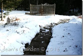 back garden under snow