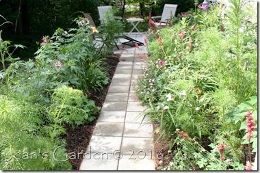 walkway to patio July 2016