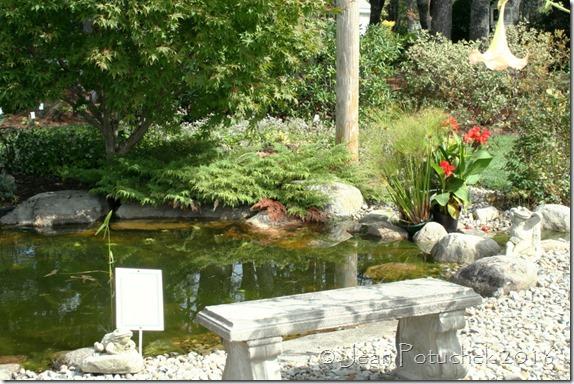 plainvew display garden3