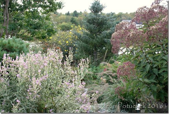 plainview display garden2