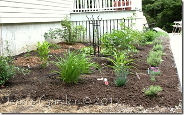 fragrant garden mulched