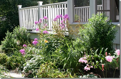 porch border August