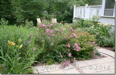 entrance garden July