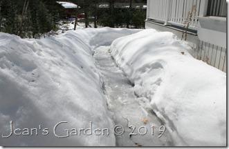 March garden under snow