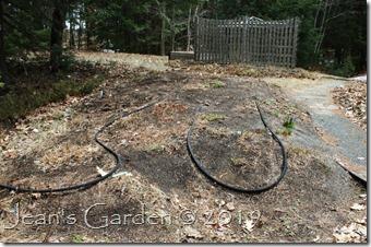 spring cleanup back garden