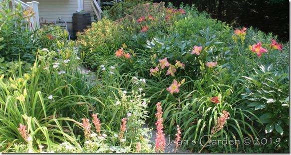 daylily season entrance garden