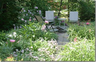 patio garden june 2021