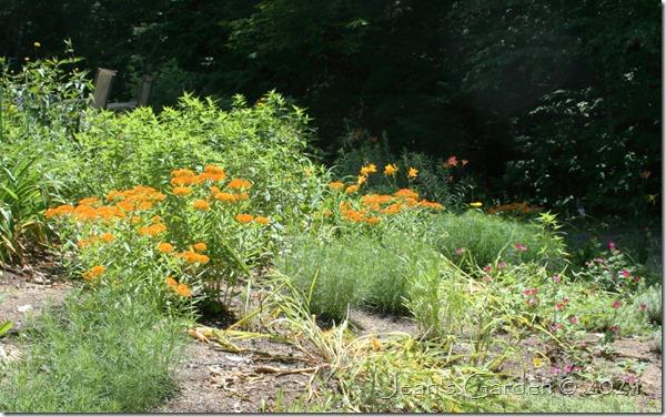 front slope oranges 7-5-21