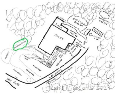 front garden diagram w woodland border